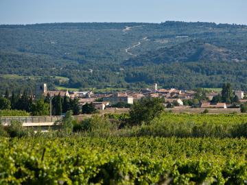 France Languedoc-Roussillon Château De Siran ***
